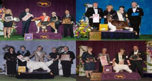 Westminster dog show 2021 judges