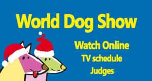 World dog show 2020