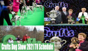 Crufts Dog Show 2021 TV Schedule