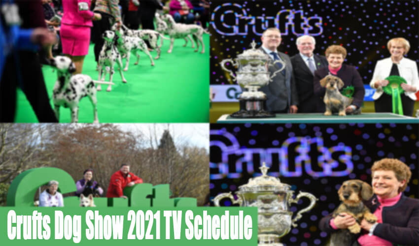 Crufts Dog Show 2021 TV Schedule