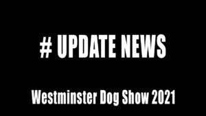 westminster dog show 2021 update news