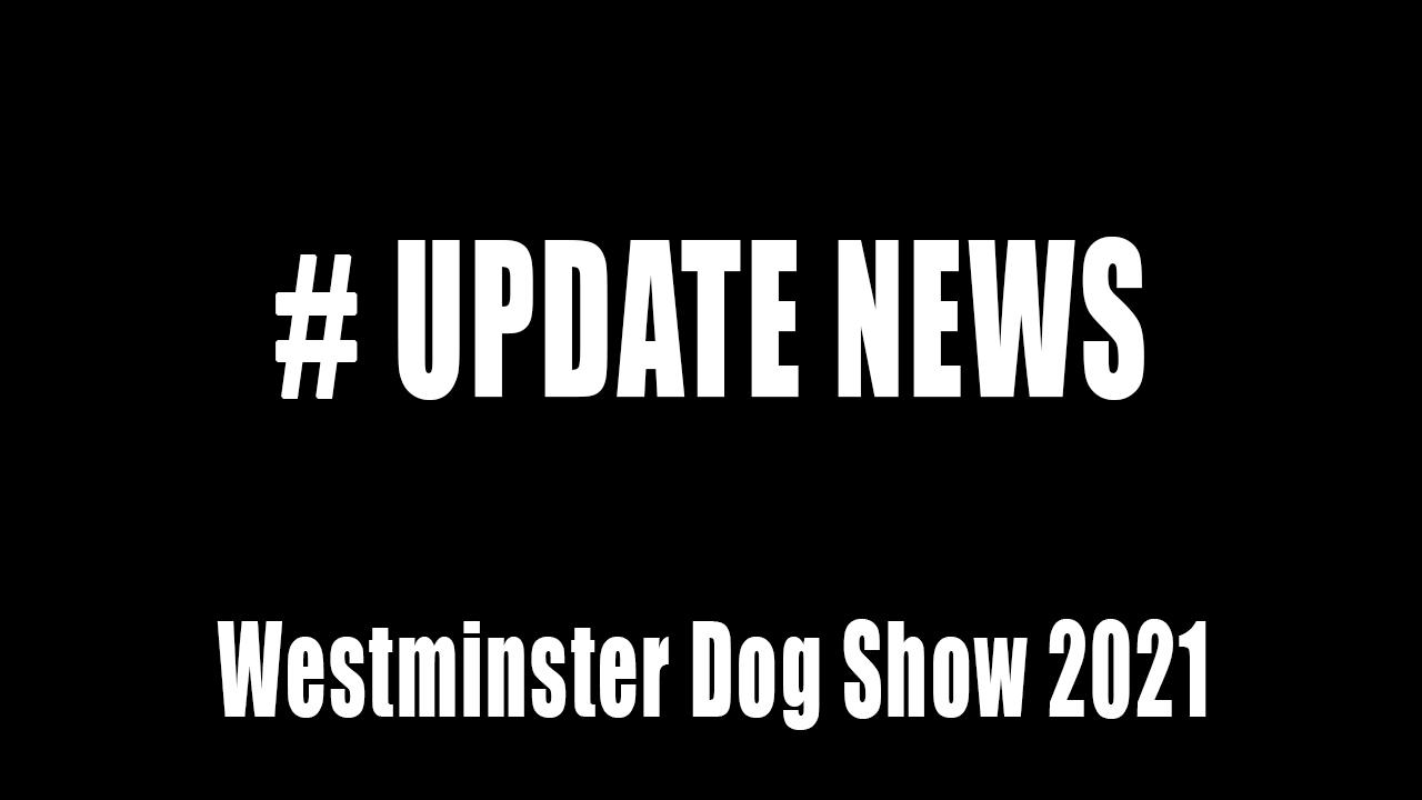 westminster dog show 2021 update news