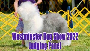 Westminster Dog Show 2022 Judging Panel