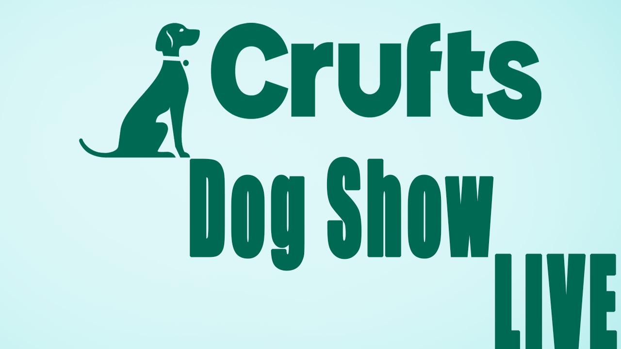 Crufts Dog Show Live Stream